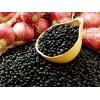 供应东北黑珍珠黑豆种